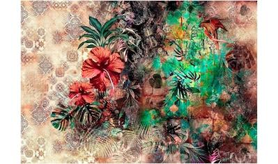 Komar Fototapete »Sherazade«, bedruckt-Wald-geblümt, ausgezeichnet lichtbeständig kaufen