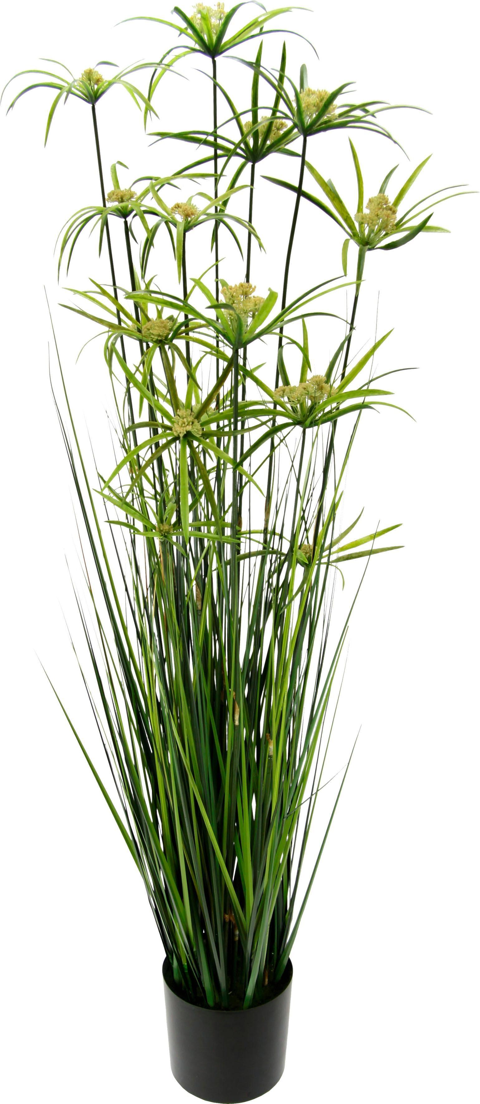 Kunstpflanze Zyperngras im Topf grün Kunstgräser Kunstpflanzen Wohnaccessoires