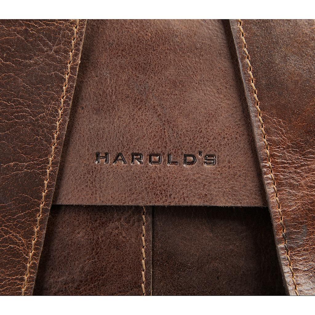 Harold's Laptoprucksack »ABERDEEN«