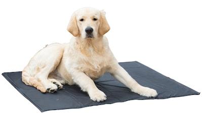ABUKI Hunde - Kühlmatte für Hunde, 81x96 cm kaufen