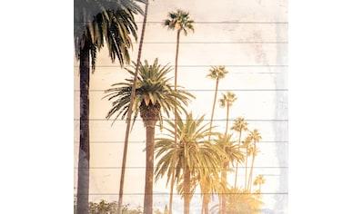 queence Holzbild »Sonnige Palmen«, 40x40 cm kaufen