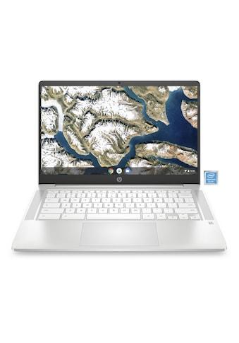 "HP Chromebook 14a - na0025ng »35,6 cm (14"") Intel Pentium, 64 GB, 4 GB« kaufen"
