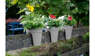 KHW Pflanzkübel »Flowerclip«, (Set, 3 St.), ØxH: 27x27,5 cm kaufen