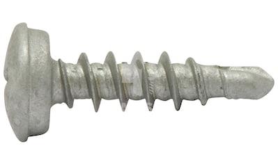 RAMSES Schrauben , selbstbohrend 5 x 25 mm 100 Stk. kaufen