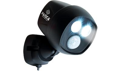 MediaShop Außen-Wandleuchte »Panta Safe Light«, LED-Board, 1 St., Kaltweiß, 360 Grad... kaufen