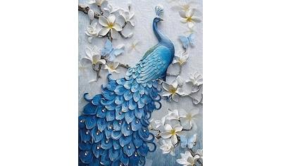 Consalnet Vliestapete »Blauer Pfau«, Motiv kaufen