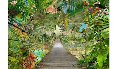 KOMAR Set: Fototapete »Wild Bridge«, Ausgezeichnet lichtbeständig kaufen