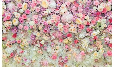 Consalnet Fototapete »Blumen«, Motiv kaufen
