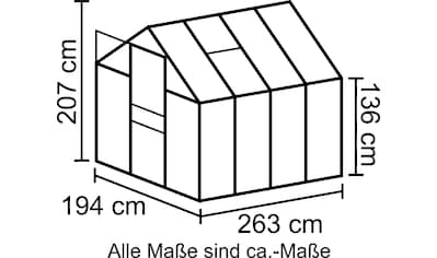 VITAVIA Sparset: Gewächshaus Set »Apollo 5000«, 194x263x207 cm, silber, 4 mm, mit Fundamentrahmen kaufen