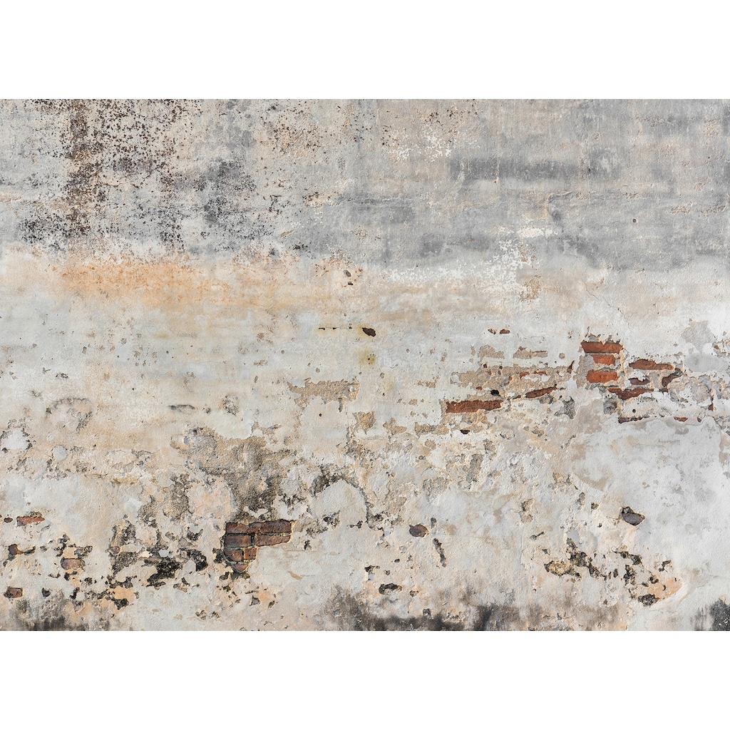 living walls Fototapete »Designwalls Old Wall«