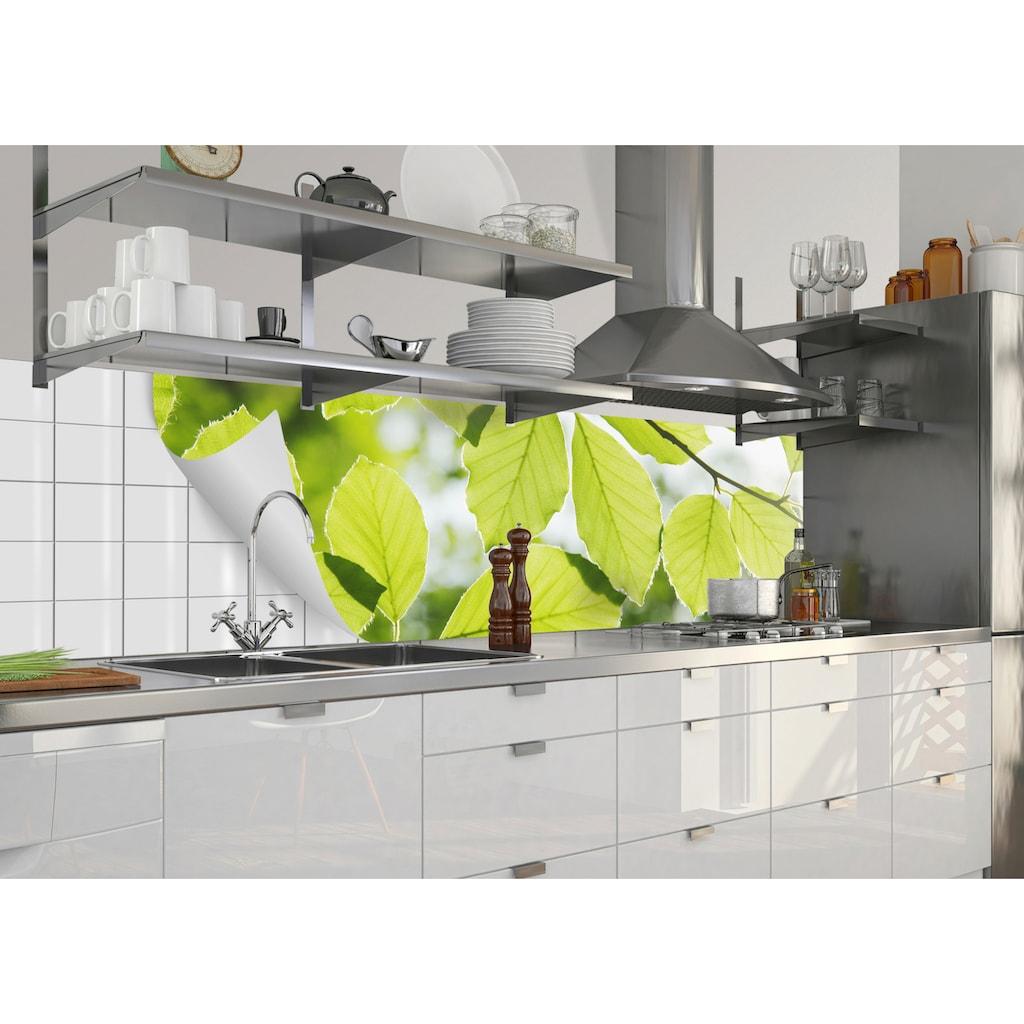 MySpotti Küchenrückwand »fixy Buchenblätter«, selbstklebende und flexible Küchenrückwand-Folie