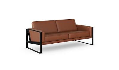 machalke® 2,5-Sitzer »frame«, Ledersofa mit Kufe in Schwarz kaufen