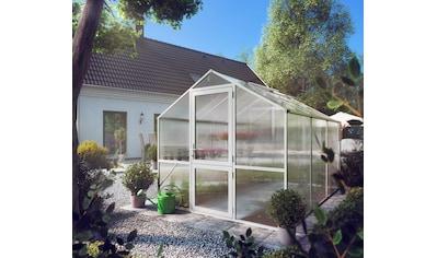 KGT Gewächshaus »Rose III«, BxT: 233x323 cm kaufen
