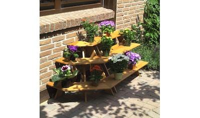 PROMADINO Blumentreppe , mit Eckelement, BxTxH: 137x59x62 cm kaufen