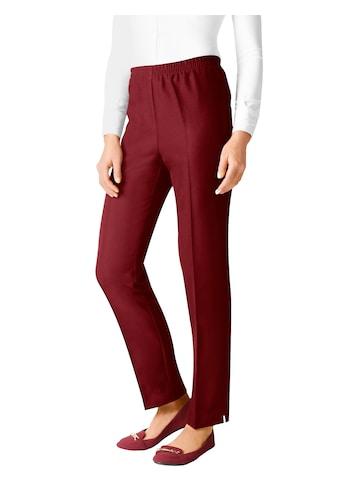 Classic Basics Hose mit elastischem Bund kaufen