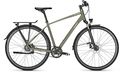 Raleigh Trekkingrad »RUSHHOUR 6.5«, 8 Gang Shimano Alfine Schaltwerk, Nabenschaltung kaufen