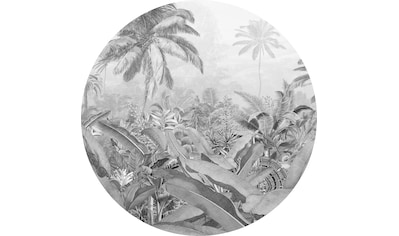 KOMAR Tapete »Amazonian Spirit« kaufen