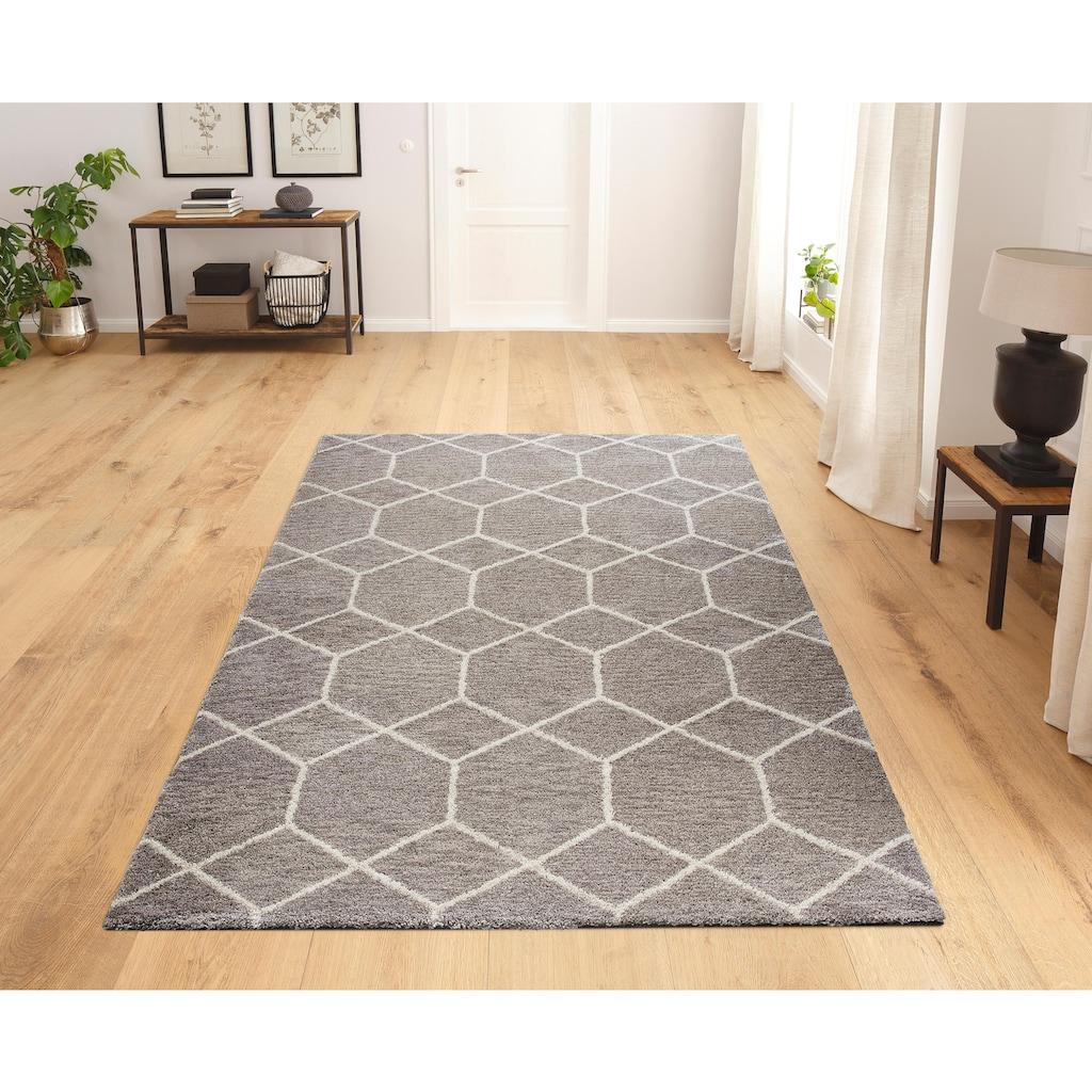 my home Hochflor-Teppich »Lasar«, rechteckig, 25 mm Höhe, Besonders weich durch Microfaser, Wohnzimmer