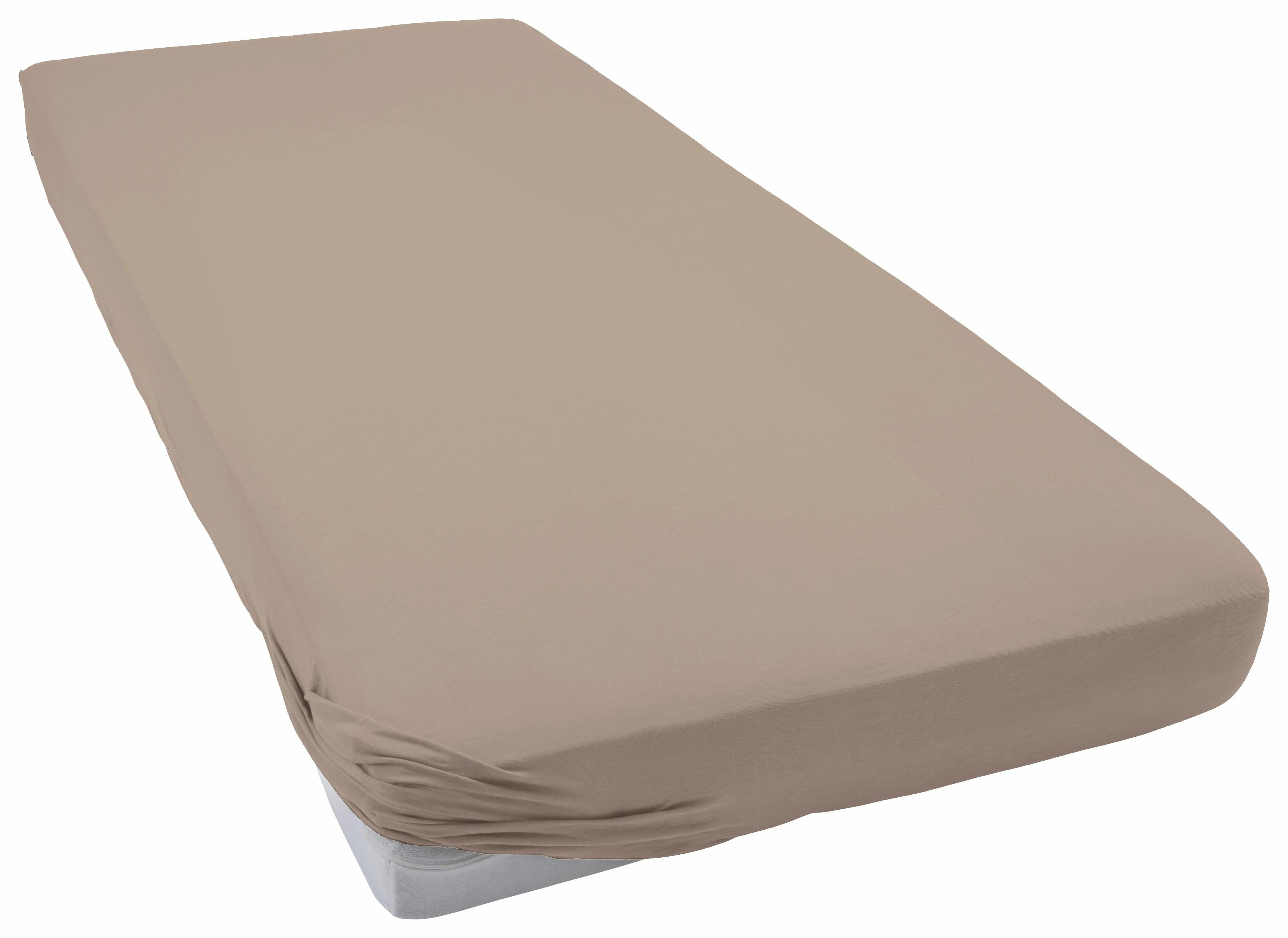 Spannbettlaken Flausch-Jersey Schlafgut | Heimtextilien > Bettwäsche und Laken > Bettlaken | Braun | Baumwolle | Schlafgut