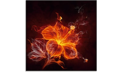 Artland Glasbild »Feuerblume« kaufen