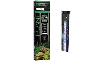 FLUVAL LED Aquariumleuchte »FL Plant 3.0 LED«, 61 - 85 cm kaufen