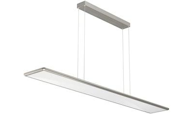 EVOTEC LED Pendelleuchte »SKY«, LED-Board, Warmweiß-Neutralweiß-Tageslichtweiß, LED... kaufen