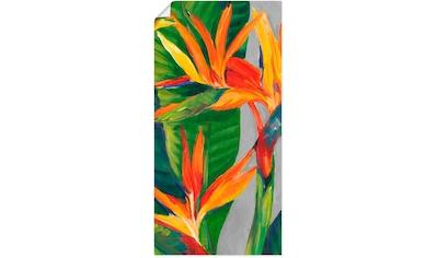 Artland Wandbild »Paradiesvogel II«, Pflanzen, (1 St.), in vielen Größen & Produktarten - Alubild / Outdoorbild für den Außenbereich, Leinwandbild, Poster, Wandaufkleber / Wandtattoo auch für Badezimmer geeignet kaufen