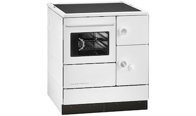 HAAS+SOHN Festbrennstoffherd »HA 75.5«, Stahl weiß, 7,5 kW,DauerbrandBackofen und Kochfeld kaufen