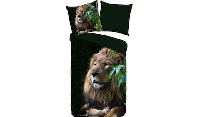 PURE luxury collection Wendebettwäsche »Lion«, mit Löwen kaufen