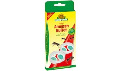 NEUDORFF Insektenvernichter »Loxiran Ameisen Buffet«, 2 Stk. kaufen