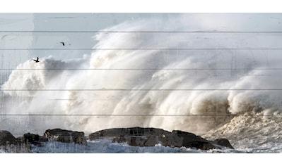 QUEENCE Holzbild »Wellenbrecher Küste«, 40x80 cm Echtholz kaufen