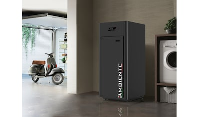 Blaze Pelletkessel »Ambiente AC 22« kaufen