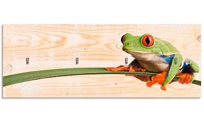 Artland Schlüsselbrett »Frosch auf einem Blatt« kaufen