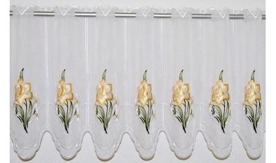 Scheibengardine, »Narzisse«, Stickereien Plauen, Durchzuglöcher 1 Stück kaufen