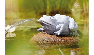 OASE Wasserspeier »Frosch« kaufen
