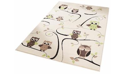 Kinderteppich, »Eulen«, Zala Living, rechteckig, Höhe 9 mm, maschinell gewebt kaufen