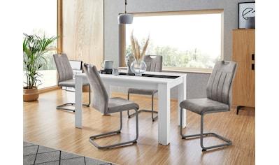 HELA Essgruppe, (Set, 5 tlg.), bestehend aus 4 Stühle & 1x Tisch kaufen
