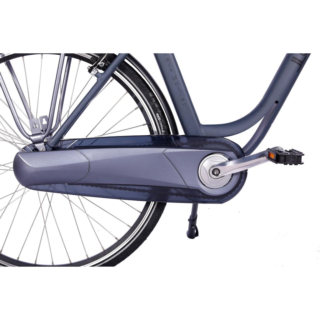 LLobe E-Bike »Black Motion 2.0, 10,4Ah«, (mit Fahrradkorb)