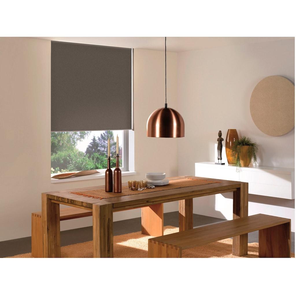 sunlines Seitenzugrollo »Start-up Style Colour Verdunkelung«, verdunkelnd, freihängend, Made in Germany