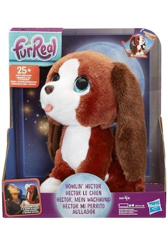 """Hasbro Kuscheltier """"furReal Hector, mein Wachhund"""" kaufen"""