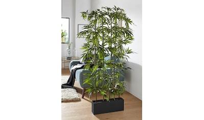 Creativ green Kunstpflanze »Bambus« (1 Stück) kaufen