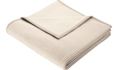 BIEDERLACK Wohndecke »New Cotton«, leichte Webdecke kaufen