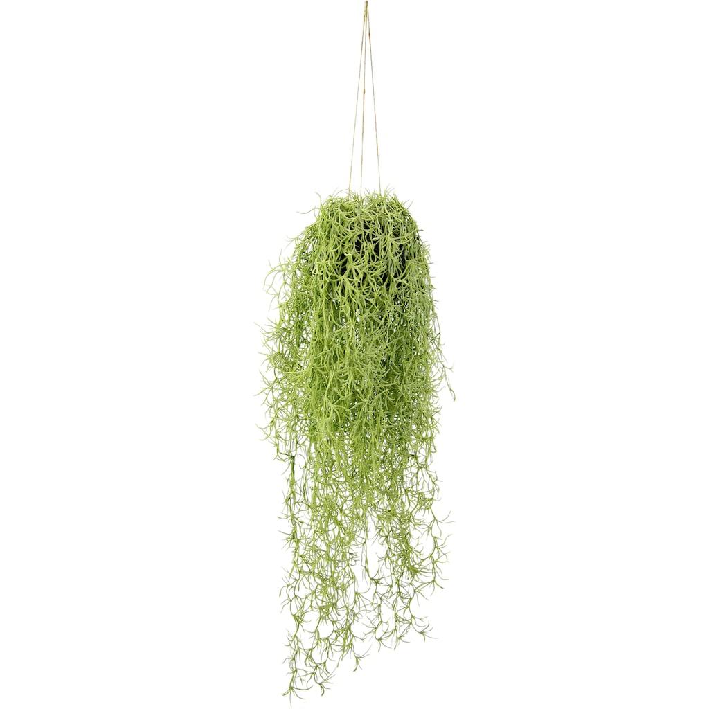 I.GE.A. Kunstpflanze »Mooshänger«, Mit Hängeampel