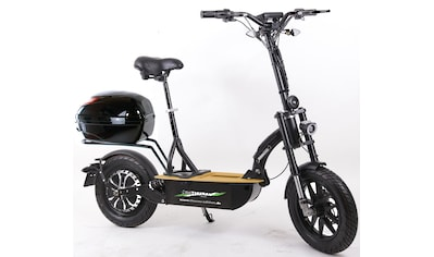 "Didi THURAU Edition E - Scooter »Elektroroller ""Eco - Tourer Speed"" 45 km/h Safety«, 1200 Watt, 45 km/h kaufen"