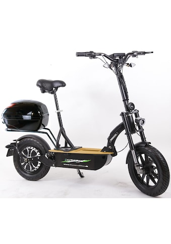 """Didi THURAU Edition E-Scooter »Elektroroller """"Eco-Tourer Speed"""" 45 km/h Safety« kaufen"""