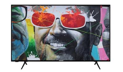 "Techwood LED-Fernseher »F43T12E«, 108 cm/43 "", Full HD kaufen"