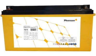 Phaesun Solarakkus »AGM Sun Store 175«, 12 V kaufen