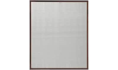 hecht international Insektenschutz-Fenster »MASTER SLIM POLLE«, braun/anthrazit, BxH: 100x120 cm kaufen