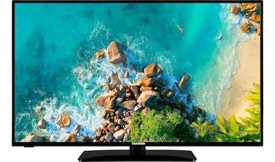 Telefunken D43F553M1 LED - Fernseher (108 cm / (43 Zoll), Full HD kaufen