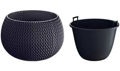 PROSPERPLAST Blumenkübel »Splofy Bowl«, anthrazit, ØxH: 29x19 cm kaufen